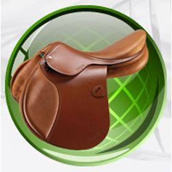 datatag-equine-saddle.jpg