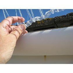 Bird Spike - Gutter Clip Fixings (1 metre pack : 6 clips) - Polycarbonate