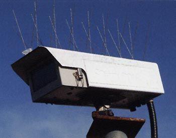 seagull-spikes-cctvcam-b5.jpg