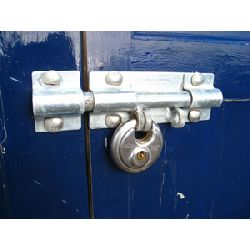 pd-discus-shedlock-b.jpg