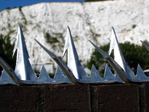Fence Spikes - Wall Spikes - Plastic Security Spikes