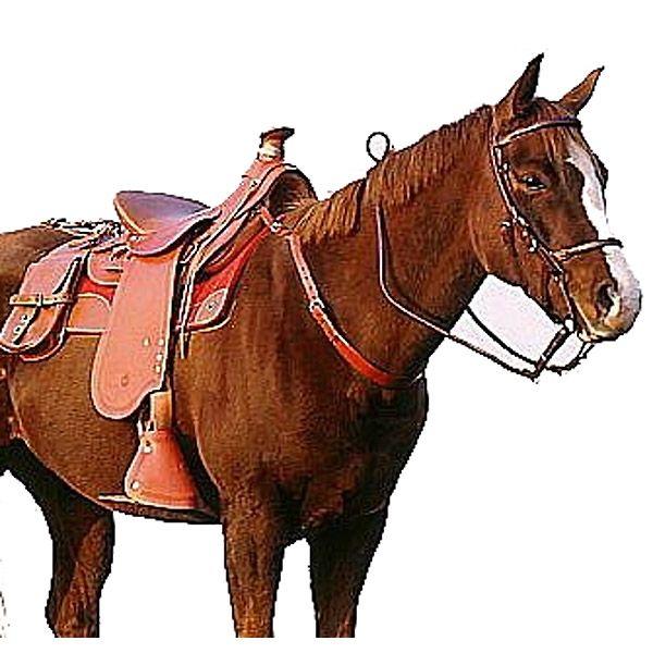 Datatag Saddle Security Marking Pack