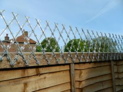 Beware the risks of using Razor Trellis