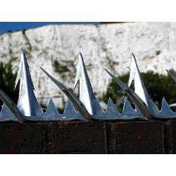 Razor Spike 11 - Anti Climb Spikes - 1.5 metre length - galvanised finish